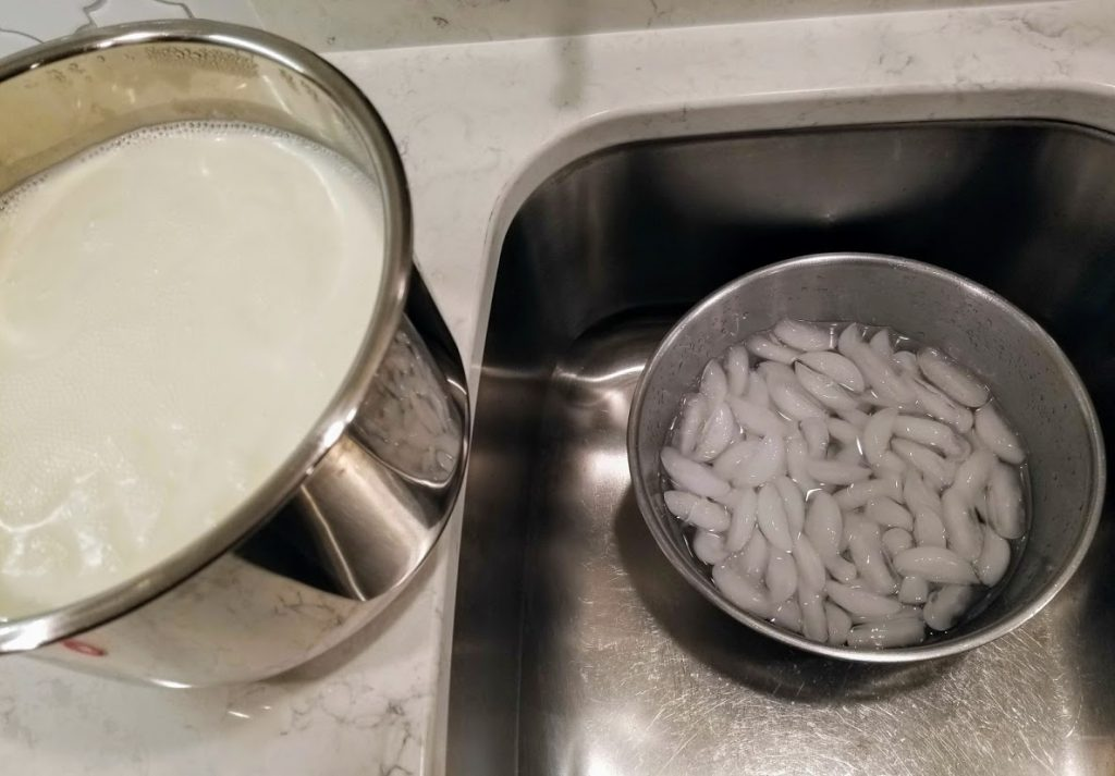 Pot of milk beside bowl of ice water in sink