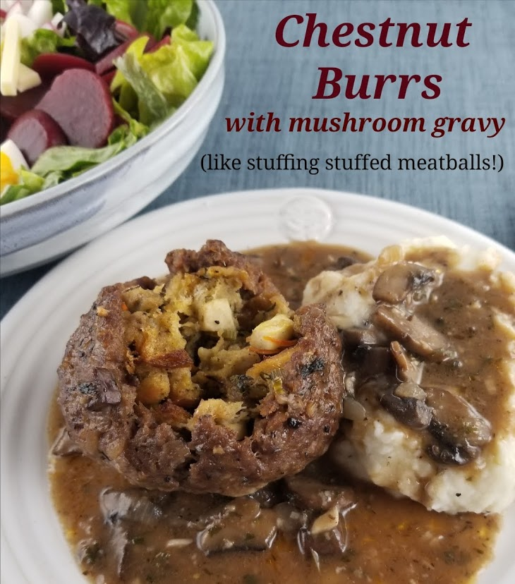 Chestnut Burr on plate with gravy and mashed potatoes and title heading