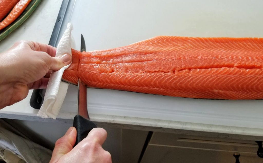 Gripping tail end of fillet with paper towel, making first cut through flesh to skin